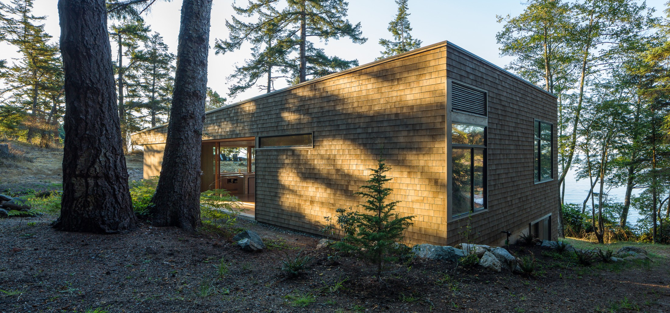 Lone Madrone exterior